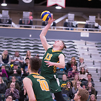 3rd year outside hitter Brennan Goski (13) of the Regina Cougars during the home game on January 6 at Centre for Kinesiology, Health and Sport. Credit: Arthur Ward/Arthur Images
