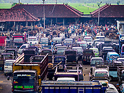 06 AUGUST 2017 - MENGWI, BALI, INDONESIA: The livestock section of the Bringkit Market in Mengwi, about 30 minutes from Denpasar. Bringkit Market is famous on Bali for its Sunday livestock and poultry market. Hundreds of the small Bali cows are bought and sold there every week. Bali's local markets are open on an every three day rotating schedule because venders travel from town to town. Before modern refrigeration and convenience stores became common place on Bali, markets were thriving community gatherings. Fewer people shop at markets now as more and more consumers go to convenience stores and more families have refrigerators.     PHOTO BY JACK KURTZ