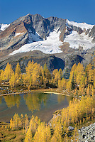 Mount Macbeth (10020 ft) 3054 m and alpine larches (Larix lyallii) seen from Monica Meadows, Purcell Mountains British Columbia