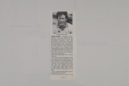 Seamus Hayden, Roscommon Football,