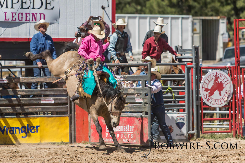 Saddle bronc rider Clayton West rides Summit Pro Rodeo's 63 Mouse in the first performance of the Elizabeth Stampede on Saturday, June 2, 2018.