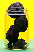 dried up fruit in glass jar object on yellow green background