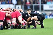 Nic White of Exeter Chiefs puts the ball in the scrum during the Aviva Premiership match between Exeter Chiefs and Harlequins at Sandy Park, Exeter, United Kingdom on 19 November 2017. Photo by Graham Hunt.