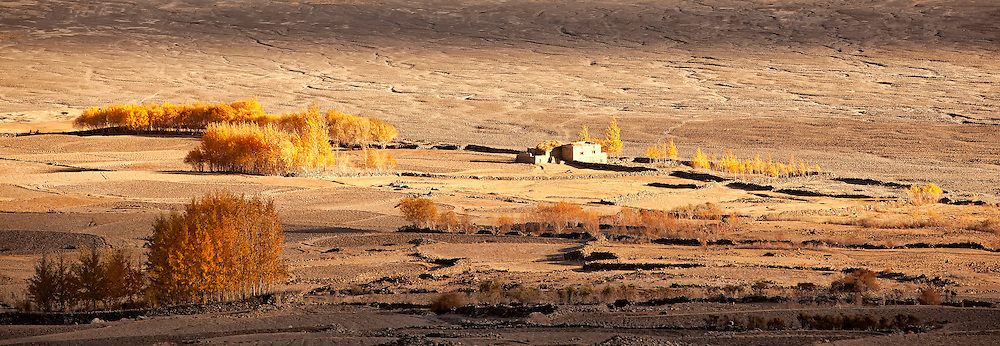 A panoranic view of a home and farm land in autumn near the Zanskar River in Ladakh India.