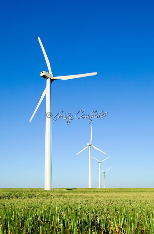 Wind farm, Colorado USA