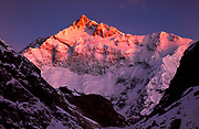 Talung face Kangchenjunga, third highest peak in world, dawn from Goetcha La, Sikkim, Himalaya, NE India