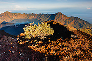 Mount Rinjani Volcano in Lombok (Indonesia).