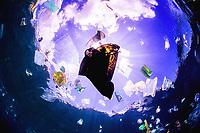 plastic ocean in Ambon