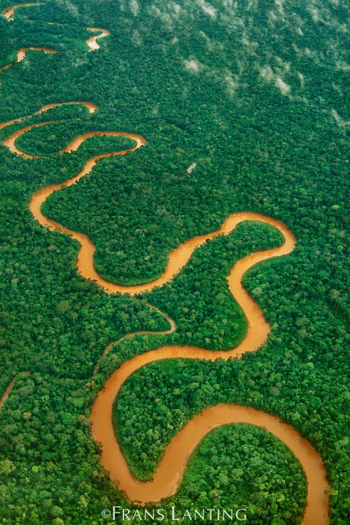 Meandering river (aerial), Tambopata National Reserve, Peru