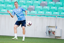 Robert Beric during practice session of Slovenian National Football Team before Euro 2016 Qualifications match against Switzerland, on September 1, 2015 in SRC Stozice, Ljubljana, Slovenia. Photo by Urban Urbanc / Sportida