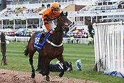 Molineaux and jockey Sean Bowen canter to the start for the 4.40pm The Close Brothers Red Rum Handicap Steeple Chase (Grade 3) 2m during the Grand National Festival Week at Aintree, Liverpool, United Kingdom on 4 April 2019.