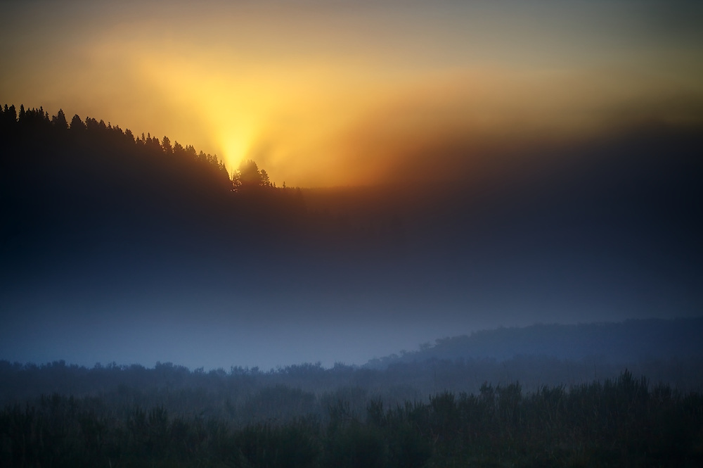 First light in Yellowstone National Park's Hayden Valley