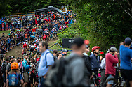 at the Women's U23 2019 Mountain Bike Cross Country World Championships in Mont-Sainte-Anne, Canada.
