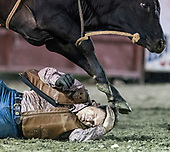 Rodeo at Madison County Fairground