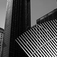 New York City, USA Black and White 2017