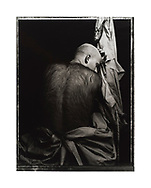 """Nimrod's Son (1986/1989)"", £3,000 GBP*. Artist's Proof. Image Size: 24.5cm x 31.5cm, Paper Size: 30cm x 40cm, selenium toned silver gelatin lith print. Each silver gelatin print has been split-selenium toned using archival methods and is stamped, titled, signed on the reverse. Please email me at info@simon-larbalestier.co.uk for availability and shipping info. All prints are shipped from the United Kingdom. *Stated price does not include shipping."
