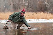 A fly fisherman releases a brown trout trout as snow falls during a late autumn/early winter day on the South Fork of the Snake River, Idaho.