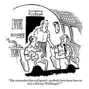 """""""The stewardess has collapsed - anybody here know how to mix a Harvey Wallbanger?"""""""
