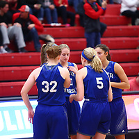 Women's Basketball: University of Wisconsin, River Falls Falcons vs. Luther College Norse