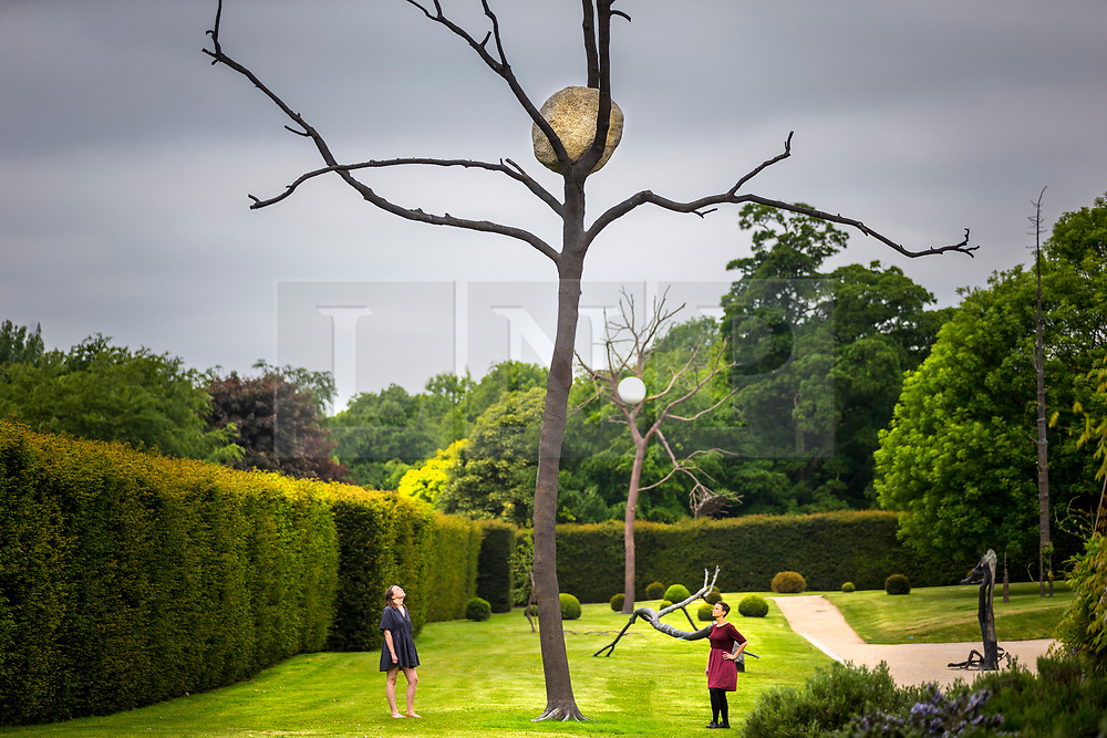 "© Licensed to London News Pictures. 24/05/2018. Wakefield UK. Lydia Turnbull & Kerry chase look at a sculpture by Giuseppe Penone made of Bronze & Stone & called ""In Bilico"" at the Yorkshire Sculpture park this morning. Giuseppe Penone presents his extensive new exhibition in YSP's light-filled Underground Gallery and across the historic landscape. Works drawn from the past five decades of Penone's career, including many never shown in the UK, trace his evolving and thoughtful consideration of humanity's intimate relationship with the natural world. His poetic practice addresses themes around the body, nature, time, touch and memory, played out across different materials from stone, acacia thorns and graphite, to thousands of laurel leaves. Photo credit: Andrew McCaren/LNP"