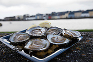 BIM Oyster Festival galway 2016