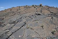Lava flows at El Malpais National Monument, New Mexico.