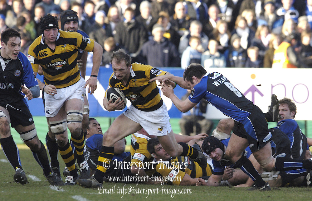Wasp's Matt Dawson,  breaking with the ball from the ruck, as Bath Rugby beat London Wasps,in the  2005/06, Guinness Premiership, Rugby, at The Rec, Bath  ENGLAND, on 24.01.2006  ENGLAND   © Peter Spurrier/Intersport Images - email images@intersport-images..
