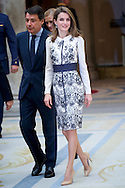 Princess Letizia of Spain Delivers Fine Arts Gold Medals at Palacio de El Pardo on December 10, 2013 in Madrid