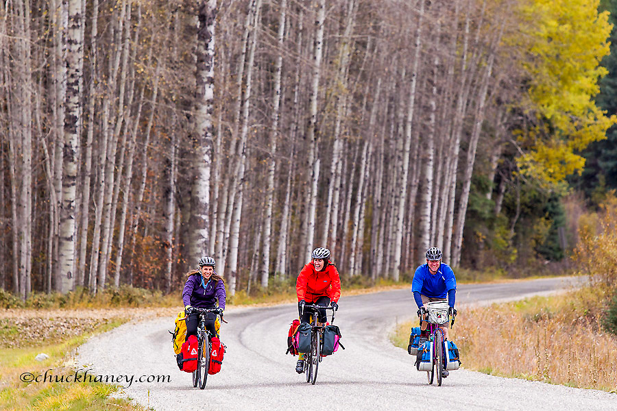 Bike touring with aspen grove in the Kootenai National Forest, Montana, USA model released