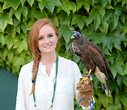 © Licensed to London News Pictures. 24/06/2014. London, UK.  Wimbledon Tennis Championships 2014<br /> Day 2. Rufus the Wimbledon hawk with handler Imogen Davies.  Photo credit : Mike King/LNP