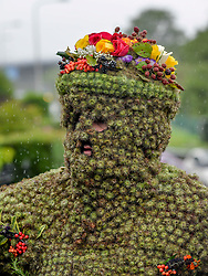 Pictured: Burryman Andrew Taylor on his tour of the town.<br /> <br /> The folklore character the Burryman carried out his annual walk through the streets of Queensferry to mark the start of the Ferry Fair, traditionally having a glass of whisky at every bar on the route. Covered head to toe in over 20,000 burrs, the tradition dates back hundreds of years.<br /> <br /> © Dave Johnston / EEm