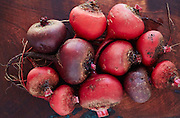 Red Beets, Chioggia Beets,