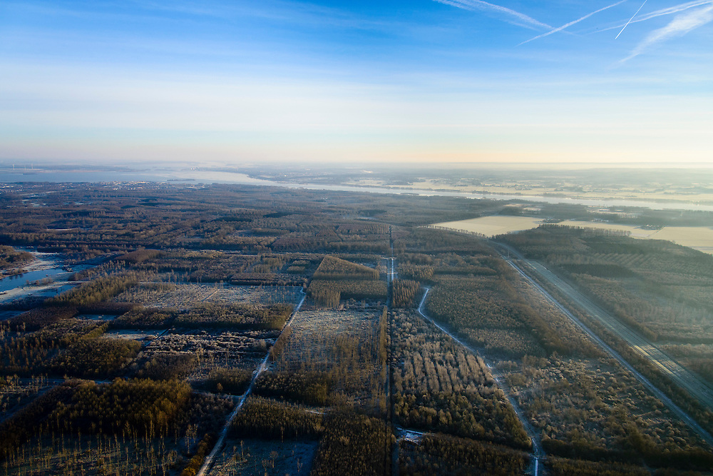 Nederland, Flevoland, Zeewolde, 18-01-2016; Horsterwold, een van de Randmeerbossen. Het bos is deels productiebos, <br /> Landscaped forest in the New Polder Flevoland.<br /> luchtfoto (toeslag op standard tarieven);<br /> aerial photo (additional fee required);<br /> copyright foto/photo Siebe Swart