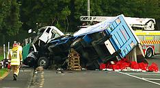 Auckland-Car diver dead after collision with milk truck, Te Atatu