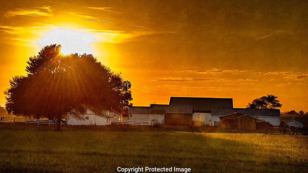 Late afternoon on an Amish farm near New Wilmington, Pa.