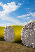 Bales of cotton at plantation along the Mississippi Delta at Tensas Co-op Gin Inc, near Tallulah, Louisiana, USA