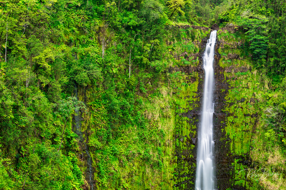 Akaka Falls, Akaka Falls State Park, Hamakua Coast, The Big Island, Hawaii USA