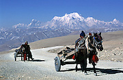 On the Friendship Highway between Tibet and Nepal horses and carts crossing a pass at 5,000m.
