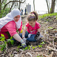 Salina Said of Chicago plants a tree sapling with her daughter. (She did not want daughter's name released on photos.)
