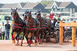 Wilf Bowman Ripley, (GBR), Belasco V, Nero, Roderick, Wikke, Zeeman - Driving Marathon - Alltech FEI World Equestrian Games™ 2014 - Normandy, France.<br /> © Hippo Foto Team - Becky Stroud<br /> 06/09/2014