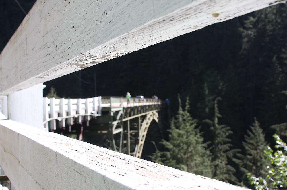 State Route 165 spanning the Carbon River  south of Carbonado.<br /> <br /> Also known as the James R. O'Farrell Bridge or the Carbon River Bridge - built in 1921 -  at the time it was the highest bridge in WA state (WSDOT).<br />  It's a sight to behold.