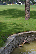 A lone turtle sits in the sun on a drainage pipe near the empty driving range as the course continued draining during round 4 of the U.S. Women's Open Championship, Shoal Creek Country Club, at Birmingham, Alabama, USA. 6/3/2018.<br /> Picture: Golffile | Ken Murray<br /> <br /> All photo usage must carry mandatory copyright credit (© Golffile | Ken Murray)