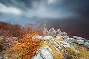 Tazha Gorge in Central Balkan National Park