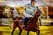 The ART of Polo by Cutler