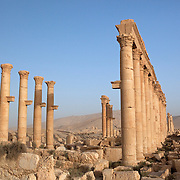 Ruins of Roman columns at Palmyra, Syria