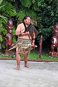 New Zealand, North Island, Rotorua, The Te Puia Geothermal Cultural Experience, Maori tribal dance