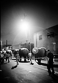 Elephants in Ringling Brothers  Circus