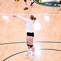 4th year libero  Taylor Ungar (13) of the Regina Cougars in action during Women's Volleyball home game on November 18 at Centre for Kinesiology, Health and Sport. Credit: Arthur Ward/Arthur Images