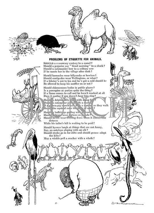Problems of Etiquette for Animals (illustrated poem).