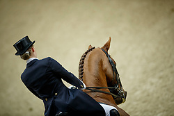 Lutkemeier Fabienne, (GER), D Agostino 5<br /> Grand Prix<br /> Reem Acra FEI World Cup Dressage - Goteborg 2016<br /> © Hippo Foto - Dirk Caremans<br /> 25/03/16